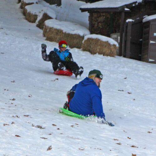 Children Sledding