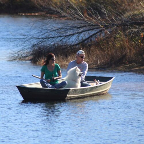 Man And Woman Boating With Their Dog
