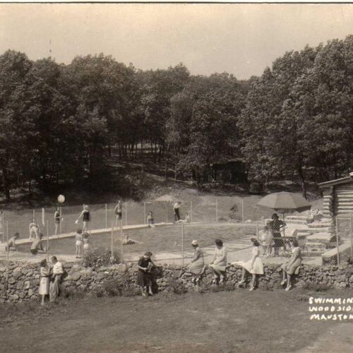 Vintage Picture Of The Swimming Pool